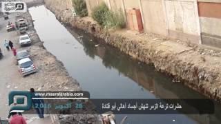 مصر العربية | حشرات ترعة الزمر تنهش أجساد أهالي أبو قتادة