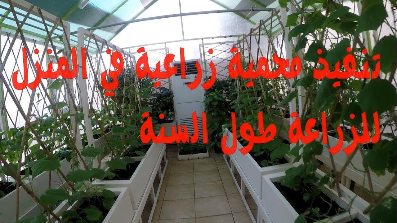 بيت محمي للزراعة في المنزل طول العام Greenhouse Youtube