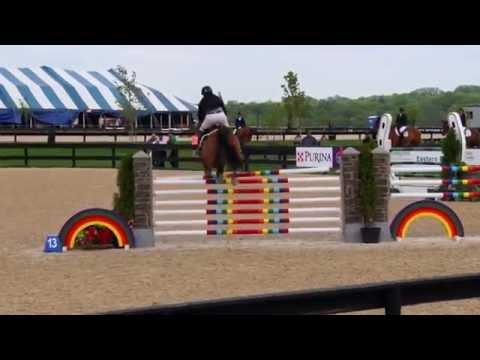 Capito Z ridden by Peter Leone--Grand Prix of Princeton