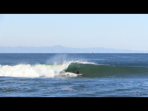 White Pelican Sand Bar Raw | Ventura, CA
