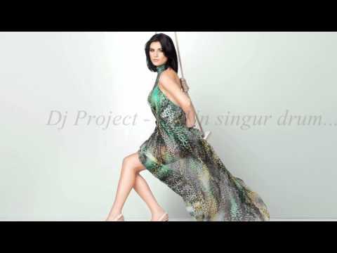 Dj Project - Un singur drum HD