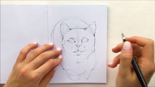 """Превью к видео уроку рисования маркерами """"Милая кошечка"""""""