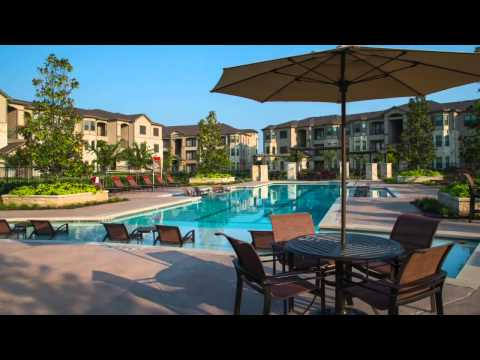 The Preserve at Spring Creek Apartments -FPM PSC Pool