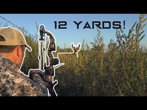 HUNTING PUBLIC In NEBRASKA! | BIG BUCK At 5 YARDS!!! | Bowhunting From The Ground!