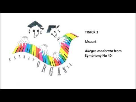 Extravorganza!  Popular classics transcribed for organ duet.