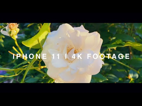 IPhone 11 | 4k Footage | A Selection Of Test Shots (4K)