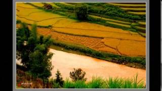 Những bài hát SONG CA Nhạc Quê Hương Hay 480p