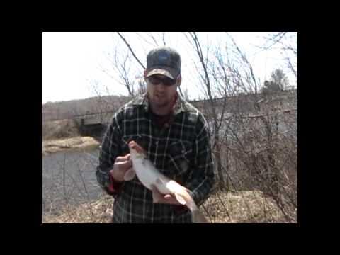 Les tours la pêche vladivostok