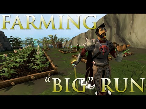 Runescape - Easy Money Making Guide | 1M - 1.5M  IN 10 MIN | EASY DAILY