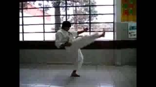 本物の前蹴りを極めよう mae geri 【空手】【光明】
