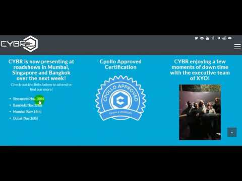 The CYBR Ecosystem is a holistic