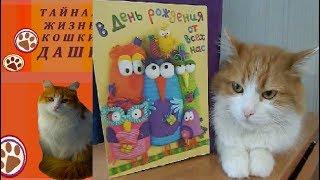 КОШКЕ ДАШЕ ИСПОЛНИЛОСЬ СЕМЬ ЛЕТ. Поздравляем кошку Дашу с днем рождения!
