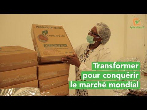 kenya-:-transformer-pour-conquérir-le-marché-mondial