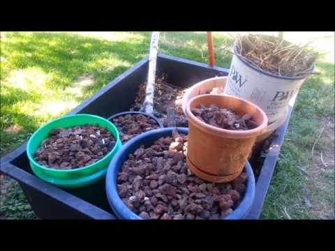 Separate Rocks From Soil - Easy DIY Sifter - Crafted Channel