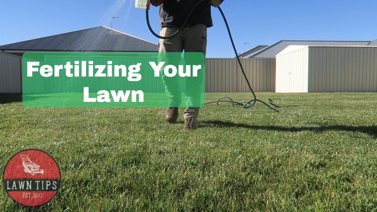 How To Fertilise Your Lawn Ly Liquid Fertilizer