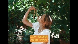 LIV ALOHA's CHOW FUN