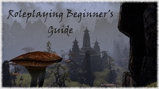 TESO Roleplaying Beginner