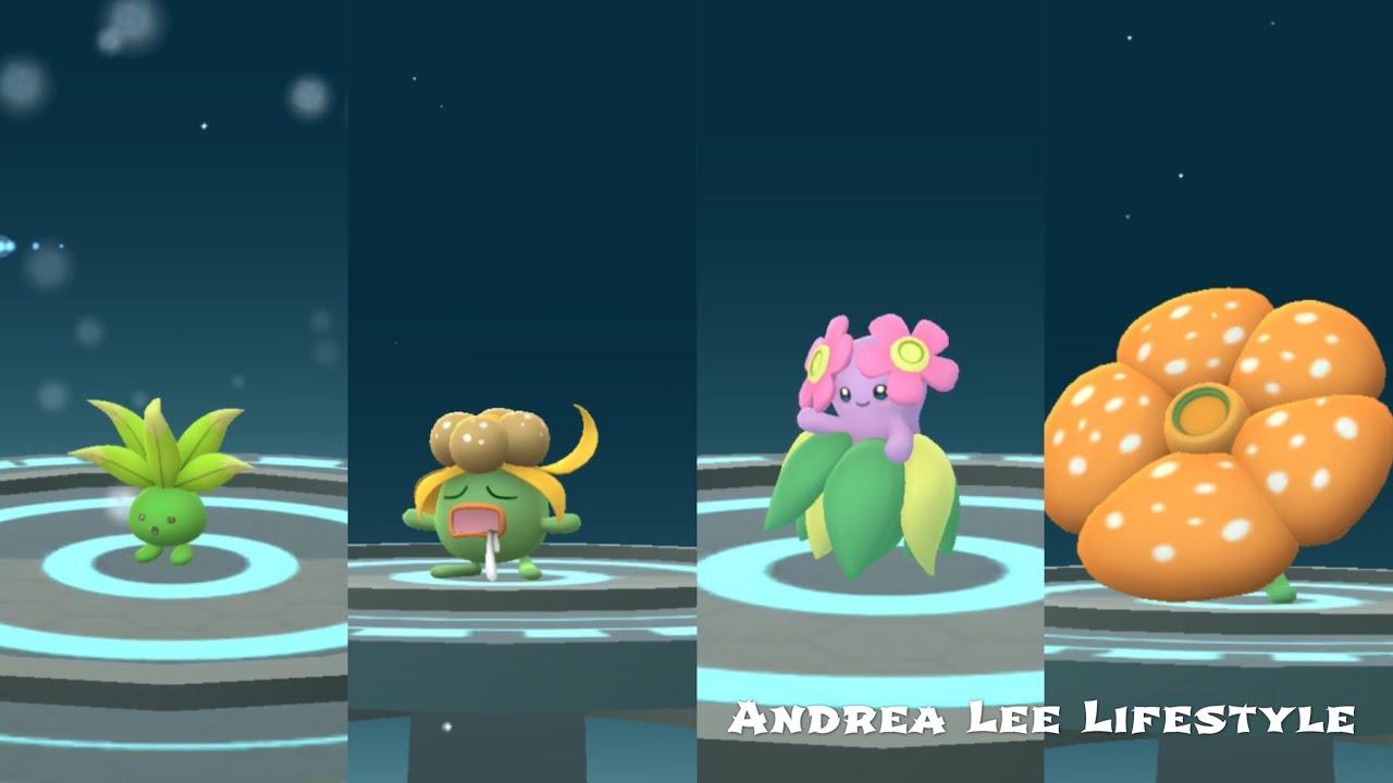 《Pokemon Go》Safari Zone抓到色違走路草進成臭臭花 再進化成美麗花 ...