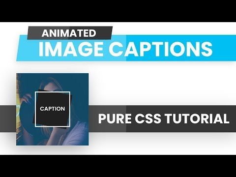 Animated Image Captions CSS | CSS Image Hover Effects | CSS Tutorial thumbnail