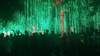 Christmas lights at Ayala Triangle 2017!