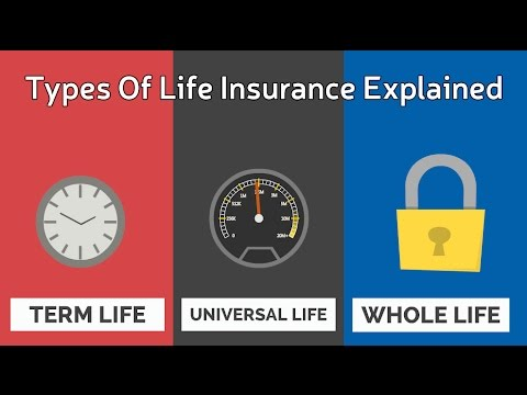 Types Of Life Insurance Explained
