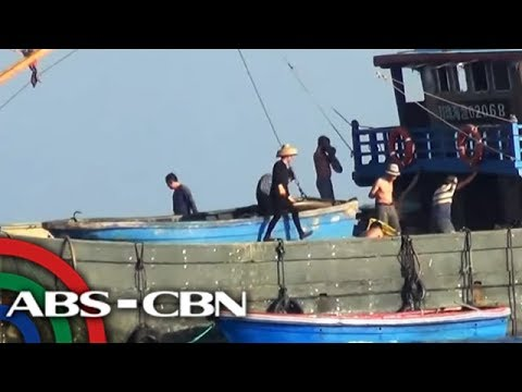 Chinese harvesting giant clams in Scarborough Shoal | ANC