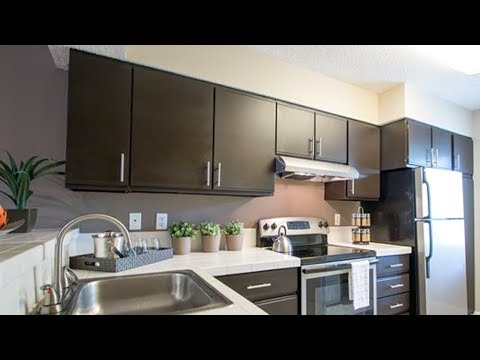 Our $1380 3br Apartment In Palm Harbor, FL - Ashford On The Lake Apartments