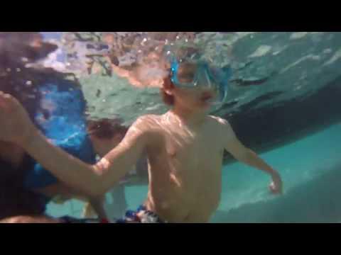 Things to do in Bora Bora // Swim With STING RAY // Bora Bora Travel Guide
