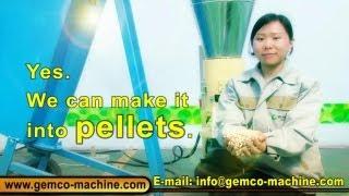 Small Homemade Wood Pellet Mill Press Machine Making Biomass Pellets From China-Hot