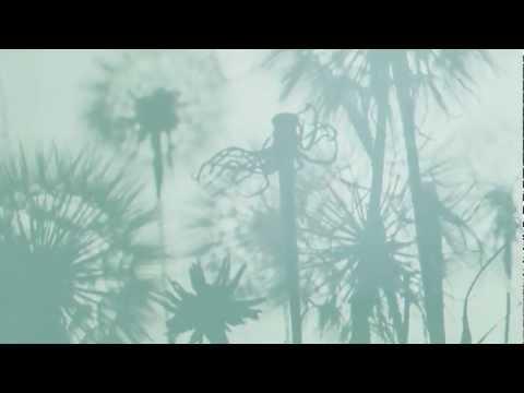 Stars - The North (Album Trailer 2)