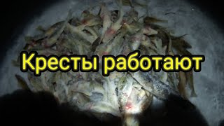 РЕКА ДОН Зимняя рыбалка 2021гЗИМНИЕ ДОНКИ КРЕСТЫ