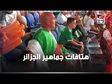 المصري اليوم:هتافات جماهير الجزائر أمام نيجيريا بـ«ستاد القاهرة»