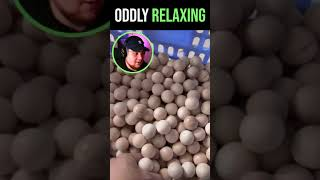 Oddly Satisfying & Relaxing Video