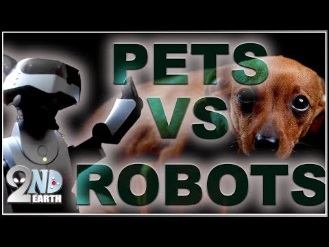 PETS vs ROBOTS •  Funny cat & dog REACTION VIDEOS COMPILATION to artificial lintelligence in 2019!