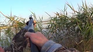 Охота на утку [Осень 2017]