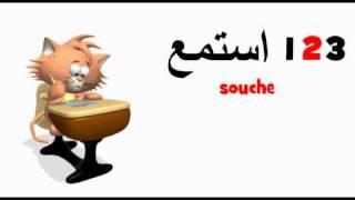 ARABE FRANCAIS = souche