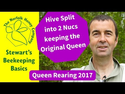 Creating Two Nucs by Splitting a Hive 2017 #Beekeeping Basics - The Norfolk Honey Co.
