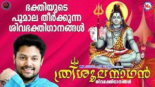 ത്രിശൂലനാഥൻ   ശിവഭക്തിഗാനങ്ങൾ  Hindu Devotional Songs Malayalam  Shiva Parvathy Devotional Songs