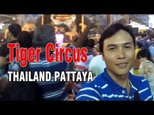 TIGER CIRCUS THAILAND PATTAYA TOUR