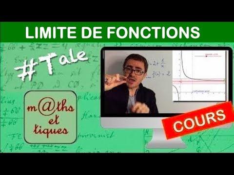LE COURS : Notion de limite d'une fonction - Terminale S