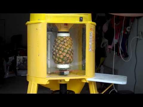 Del Monte Automatic Pineapple Peeler Corer Machine
