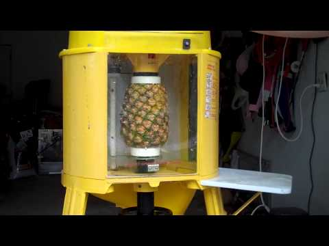 pineapple coring machine