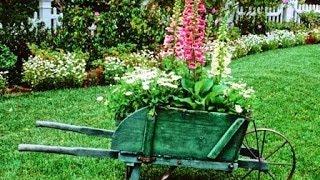 Дизайн дачи и сада. Красивые и интересные идеи