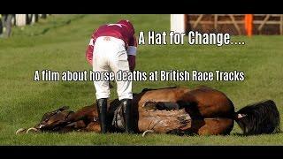 RACEHORSE DEATHS - 'A HAT FOR CHANGE' - ROYAL ASCOT 2016 - PART 1
