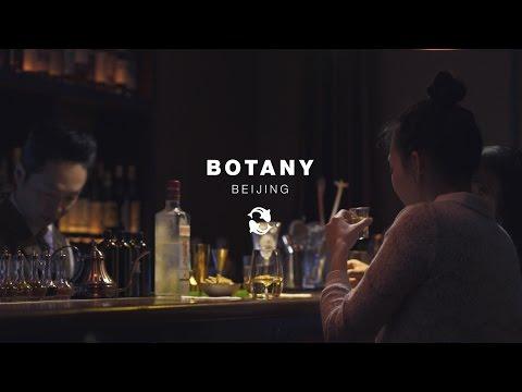 Beijing Bar Guide: Reservations Only for Craft-Cocktails Served Au Natural