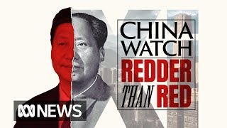 The rise of Xi Jinping: From cave dweller to post-modern chairman | China Watch pt II