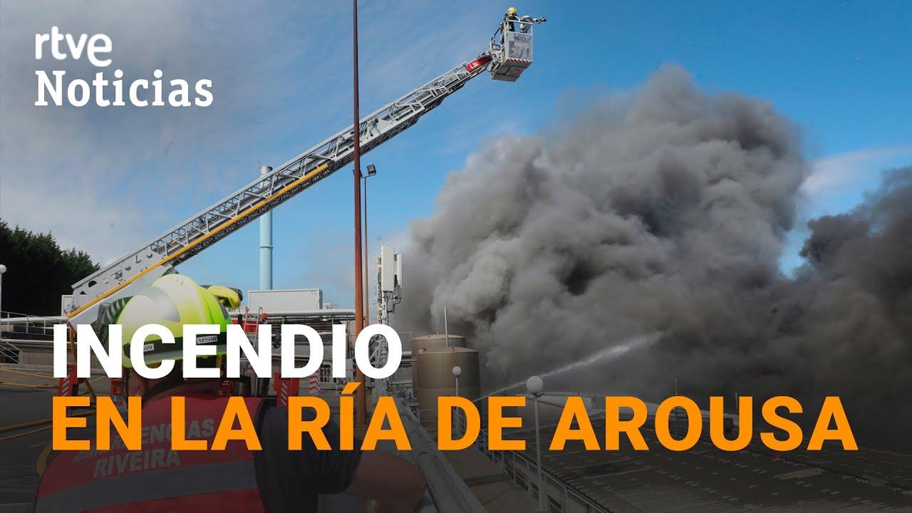 Incendio industrial afecta a conservera