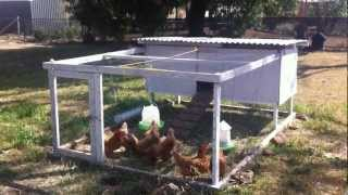 Tour our Chicken Tractor. DIY portable chicken coop