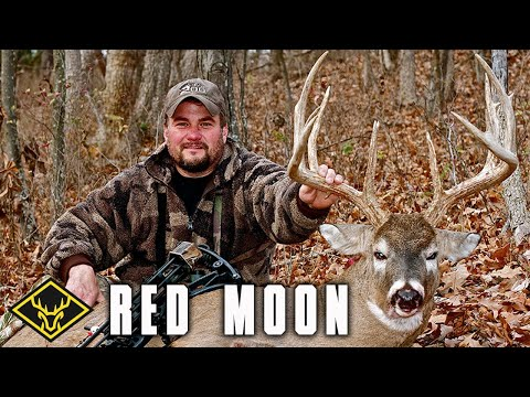 red moon phase deer hunting - photo #10