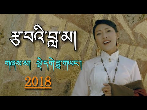 New Tibetan Song 2018 by Dege Dayang - Tsawi Lama རྩ་བའི་བླ་མ།
